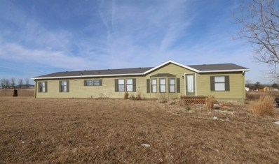 7822 County Road 158, East Liberty, OH 43319 - MLS#: 218003652