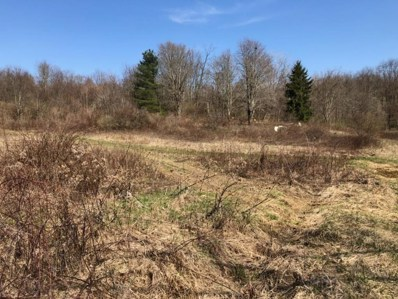 14842 County Road 55, Mount Perry, OH 43760 - MLS#: 218011394