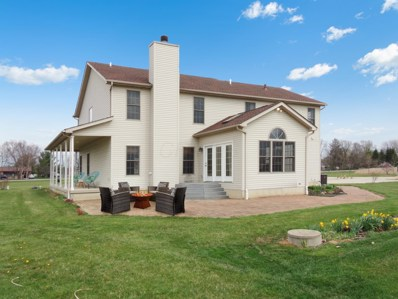 8411 Roberts Road, Hilliard, OH 43026 - MLS#: 218011905