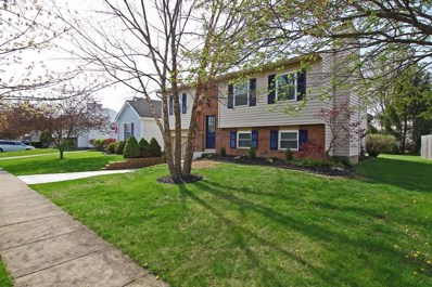 1743 Durango Court, Powell, OH 43065 - MLS#: 218014576