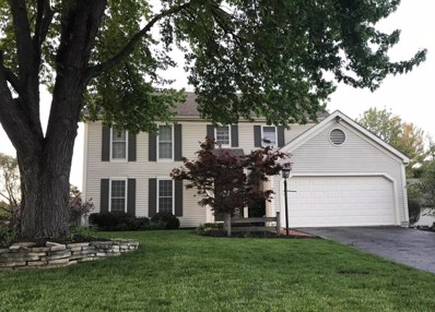 232 Old Spring Lane, Dublin, OH 43017 - MLS#: 218015620