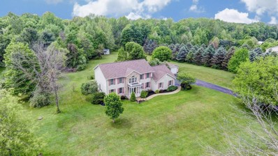 8255 Sportsman Club Road, Johnstown, OH 43031 - MLS#: 218017049