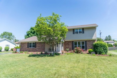 9864 Shalemar Drive, Pickerington, OH 43147 - MLS#: 218019487
