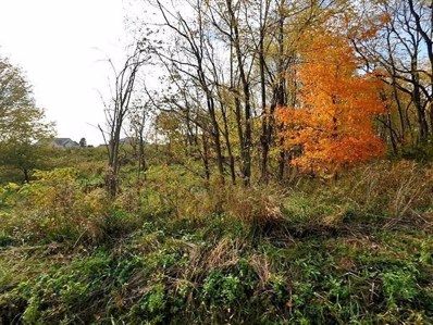 Outville Road SW, Pataskala, OH 43062 - MLS#: 218019873