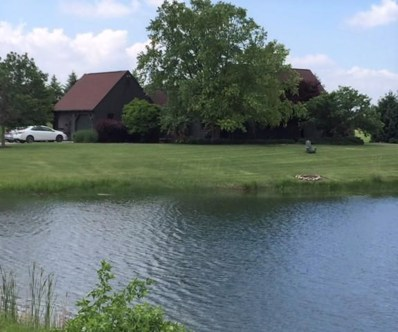 22691 Pelomar Lane, Marysville, OH 43040 - MLS#: 218020372