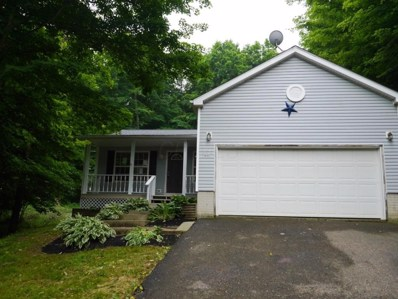 43 Orchard View Court, Howard, OH 43028 - MLS#: 218020704