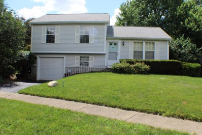 7679 Traphill Court, Columbus, OH 43235 - MLS#: 218021746