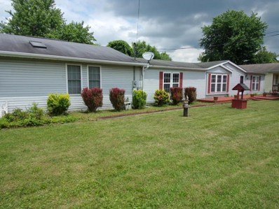 63 Central Avenue, Buckeye Lake, OH 43008 - MLS#: 218022199