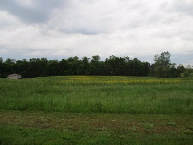 County Road 20, Mount Gilead, OH 43338 - MLS#: 218023426