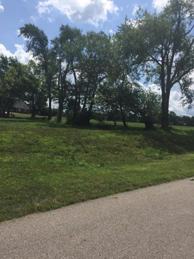 293 Marsh Hawk Court Place, Canal Winchester, OH 43110 - MLS#: 218023948