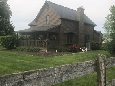 6903 S Old State Road, Lewis Center, OH 43035 - MLS#: 218023985