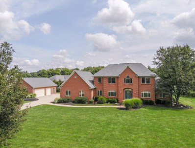 6772 Ohio Canal Court, Canal Winchester, OH 43110 - MLS#: 218024065