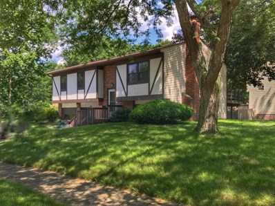 3832 Blueberry Hollow Road, Columbus, OH 43230 - MLS#: 218024336
