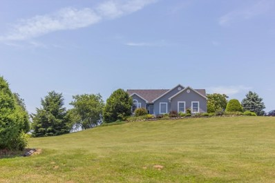 17037 Connector Road, Fredericktown, OH 43019 - MLS#: 218024650