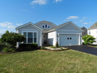 333 Timbersmith Drive, Delaware, OH 43015 - MLS#: 218025091