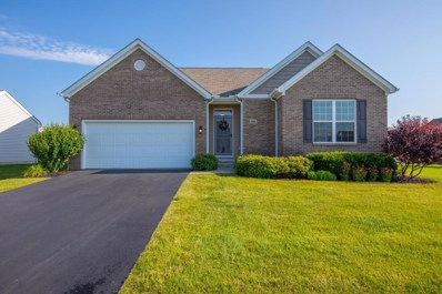 480 Harness Place, Marysville, OH 43040 - MLS#: 218025500