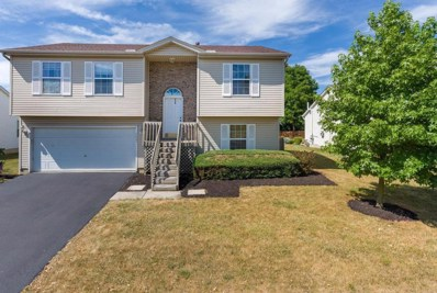 1027 Brittany Drive, Delaware, OH 43015 - MLS#: 218027062