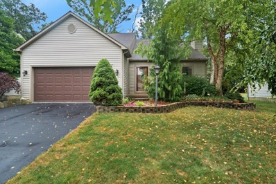 779 Barberry Spur Avenue, Delaware, OH 43015 - MLS#: 218027166