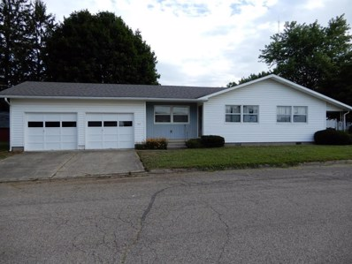 217 Allen Street, Williamsport, OH 43164 - MLS#: 218027235