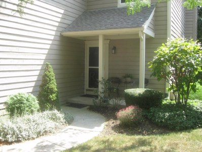 3689 Hilliard Station Road UNIT 3689, Hilliard, OH 43026 - MLS#: 218028362
