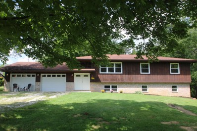 3770 S Old State Road, Lewis Center, OH 43035 - MLS#: 218032920