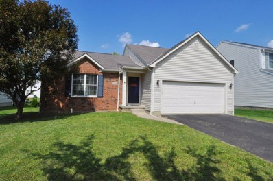 7966 Waggoner Run Drive, Blacklick, OH 43004 - MLS#: 218033087