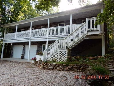 668 Floral Valley East Drive E, Howard, OH 43028 - MLS#: 218033475
