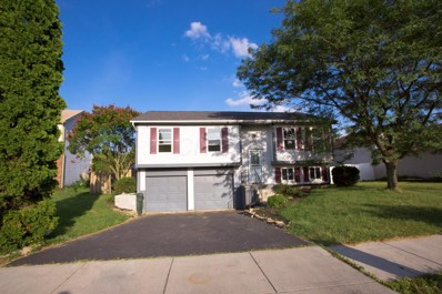 382 Old Ranch Court, Galloway, OH 43119 - MLS#: 218033566