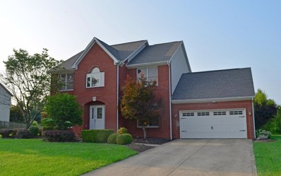 3825 Bluff Drive, Lewis Center, OH 43035 - MLS#: 218034088