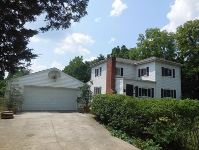 6919 Cook Road, Powell, OH 43065 - MLS#: 218036166