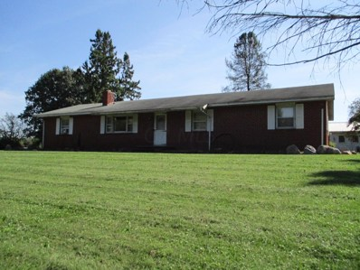 10924 Old Delaware Road, Mount Vernon, OH 43050 - MLS#: 218037087