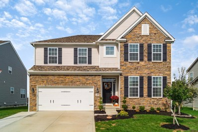 198 Silver Maple Drive, Commercial Point, OH 43116 - #: 218038977