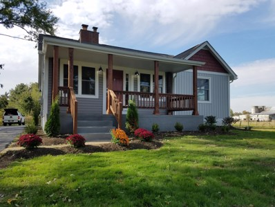 4730 S Old State Road, Lewis Center, OH 43035 - MLS#: 218040393