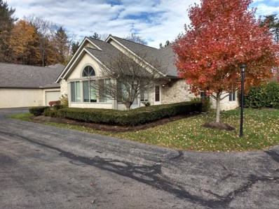 8484 Stonewoods Lane, Powell, OH 43065 - MLS#: 218041809