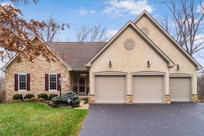 3439 Mccammon Chase Drive, Lewis Center, OH 43035 - #: 218044103