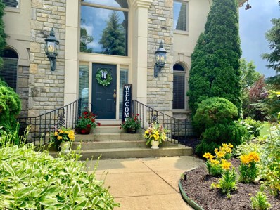 6465 Lake Trail Drive, Westerville, OH 43082 - #: 219000768