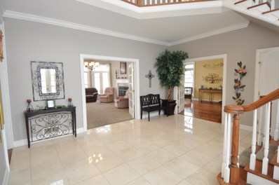 233 Players Club Court, Commercial Point, OH 43116 - #: 219003019
