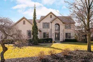 7811 Boylston Court, Dublin, OH 43016 - #: 219003683