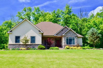 6558 Cook Road, Powell, OH 43065 - #: 219005666