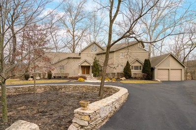 8071 Olentangy River Road, Delaware, OH 43015 - #: 219005866