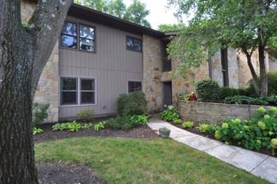 3137 Griggsview Court, Columbus, OH 43221 - #: 219007395