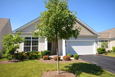 5429 Welbourne Place, New Albany, OH 43054 - #: 219007416