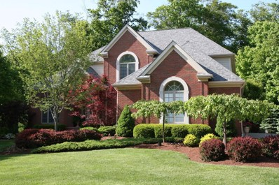 6384 Lake Trail Drive, Westerville, OH 43082 - #: 219007498