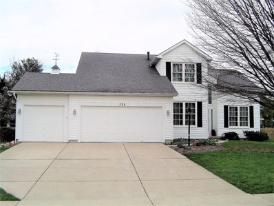 536 Courtright Court, Pickerington, OH 43147 - #: 219011284