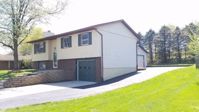 207 Crocus Court, Newark, OH 43055 - #: 219013359