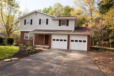 78 Northview Drive SW, Etna, OH 43068 - #: 219014362