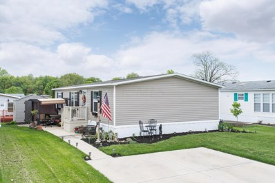 14 Birch Row Drive, Delaware, OH 43015 - #: 219015652