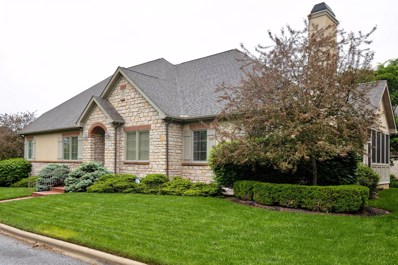 3282 Welsh Abbey Road, Dublin, OH 43017 - #: 219016365