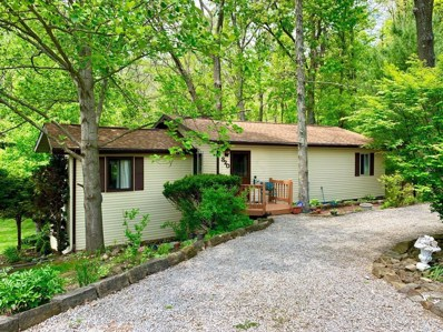 320 Green Acre Drive, Howard, OH 43028 - #: 219016774