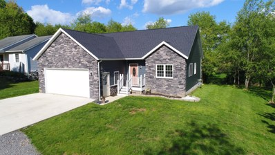 441 Ridgeland Circle, Howard, OH 43028 - #: 219016865